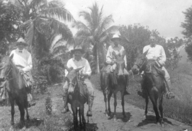 Old Belize Gallery Belize Horse Back