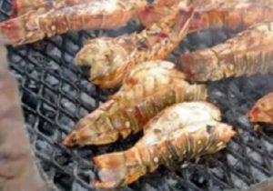 Belize Lobster Festival