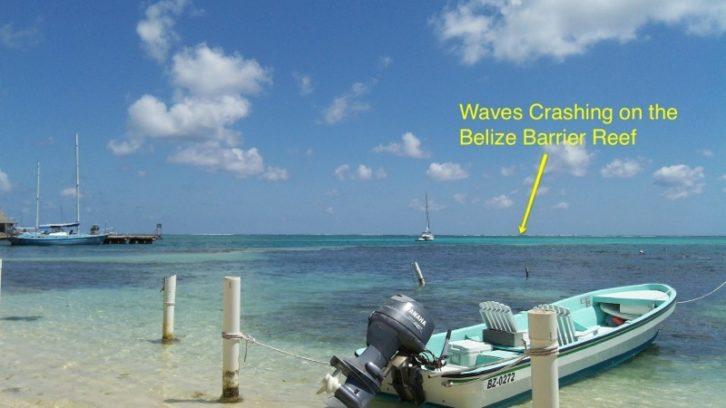 Belize Barrier Reef San Pedro Ambergris Caye Island