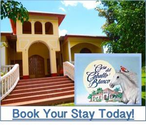Places to Stay in Belize Casa del Caballo Blanco Eco Resort