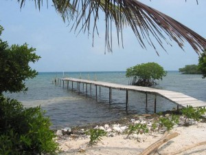 Belize Gallery 7 234