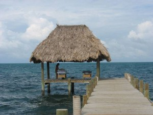Belize Gallery 8 283